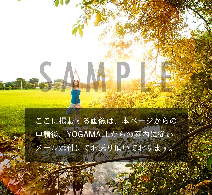ヨガインストラクター養成講座・スタンダード開催【9月2日(日)から】